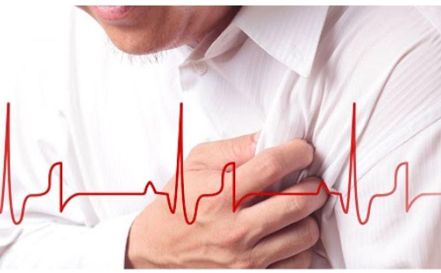 Trà Hojicha có tác dụng rất lớn trong việc hỗ trợ và ngắn ngừa các bệnh tim mạch